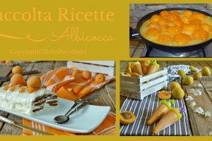 Raccolta Ricette Albicocche