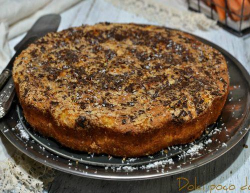 Torta camilla morbidissima senza glutine con farina di riso cocco e cioccolato