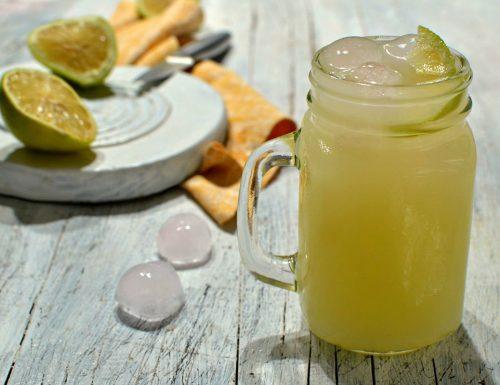 Sciroppo di limone fatto in casa per ghiaccioli con Bimby e senza