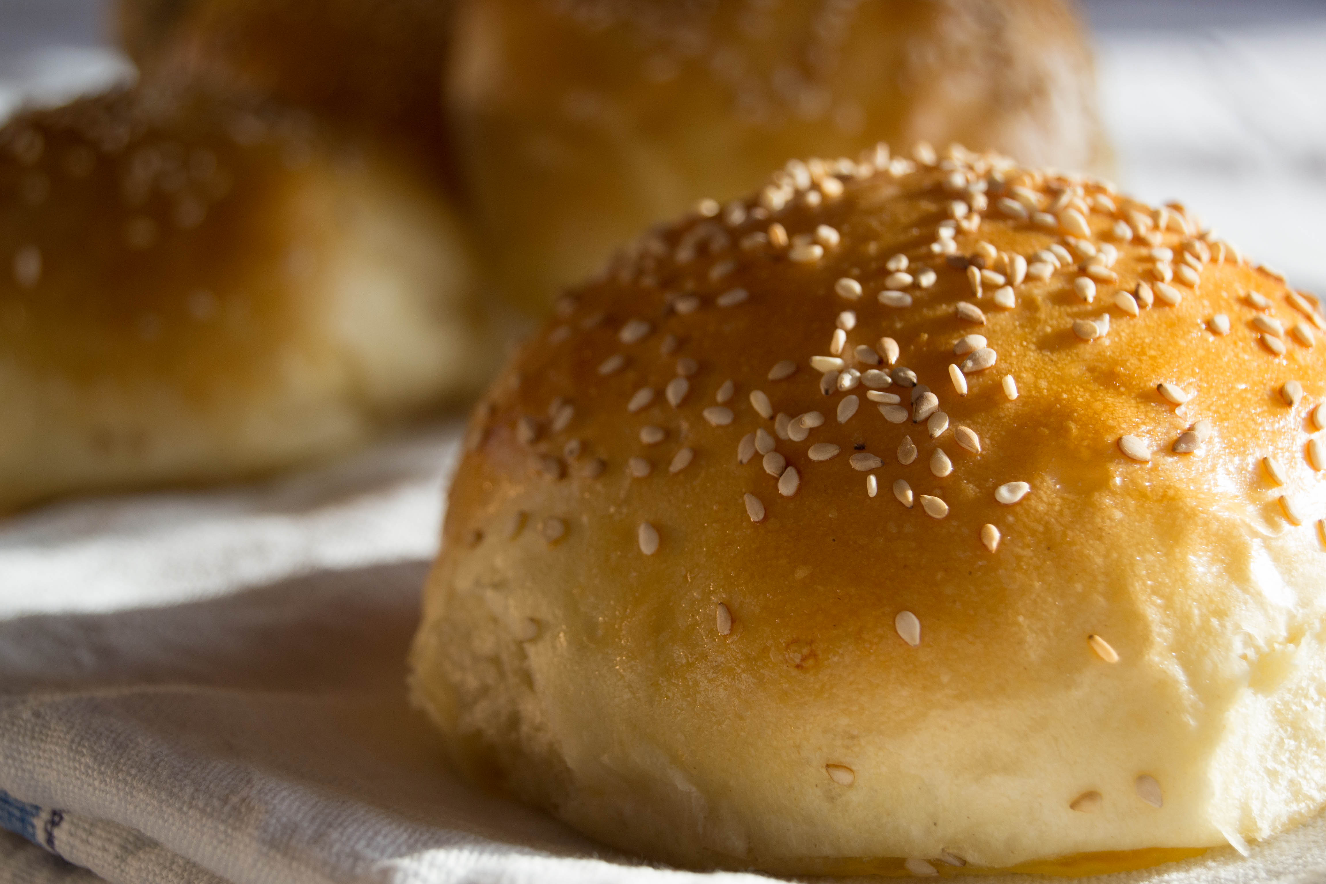 Panini per hamburger fatti in casa: burger buns