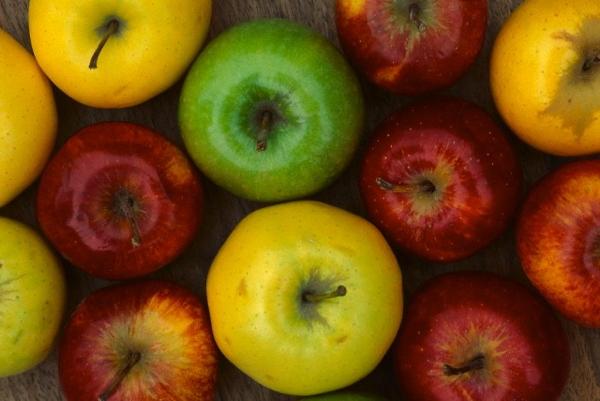 le mele per la cottura