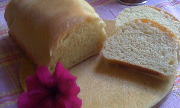 Pan bauletto pane bianco all'olio d'oliva ricetta semplice con pasta madre
