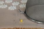 Margherite in pasta di zucchero