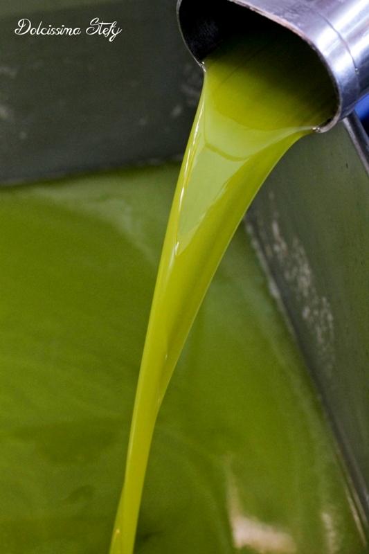 Il Cilento, tra Mozzarella nella Mortella e Olio extravergine di Oliva