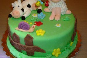 Si inizia con il cake design… la torta fattoria !!