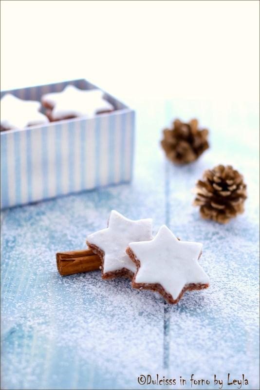 zimtsterne, stelle alla cannella, zimtsterne, biscotti alla cannella, biscotti, biscotti da regalare, biscotti natalizi, christmas cookies, cookies, Natale, ricetta biscotti, ricetta di natale, ricetta natalizia, biscotti di natale, bisquit, ricetta, ricetta Alto Adige, ricetta veloce, ricetta semplice, ricetta facile, Alto Adige, Sudtirolo, Sudtirol, rezept, biscotti alla cannella stelline alla cannella biscotti alle mandorle stelle alle mandorle biscotti con glassa weihnachten rezepte Christmas recipies pasticceria natalizia biscotti natalizi glassa all'albume glassa all'uovo glassa per biscotti biscotti decorati con glassa Dulcisss in forno by Leyla ricette biscotti Leyla