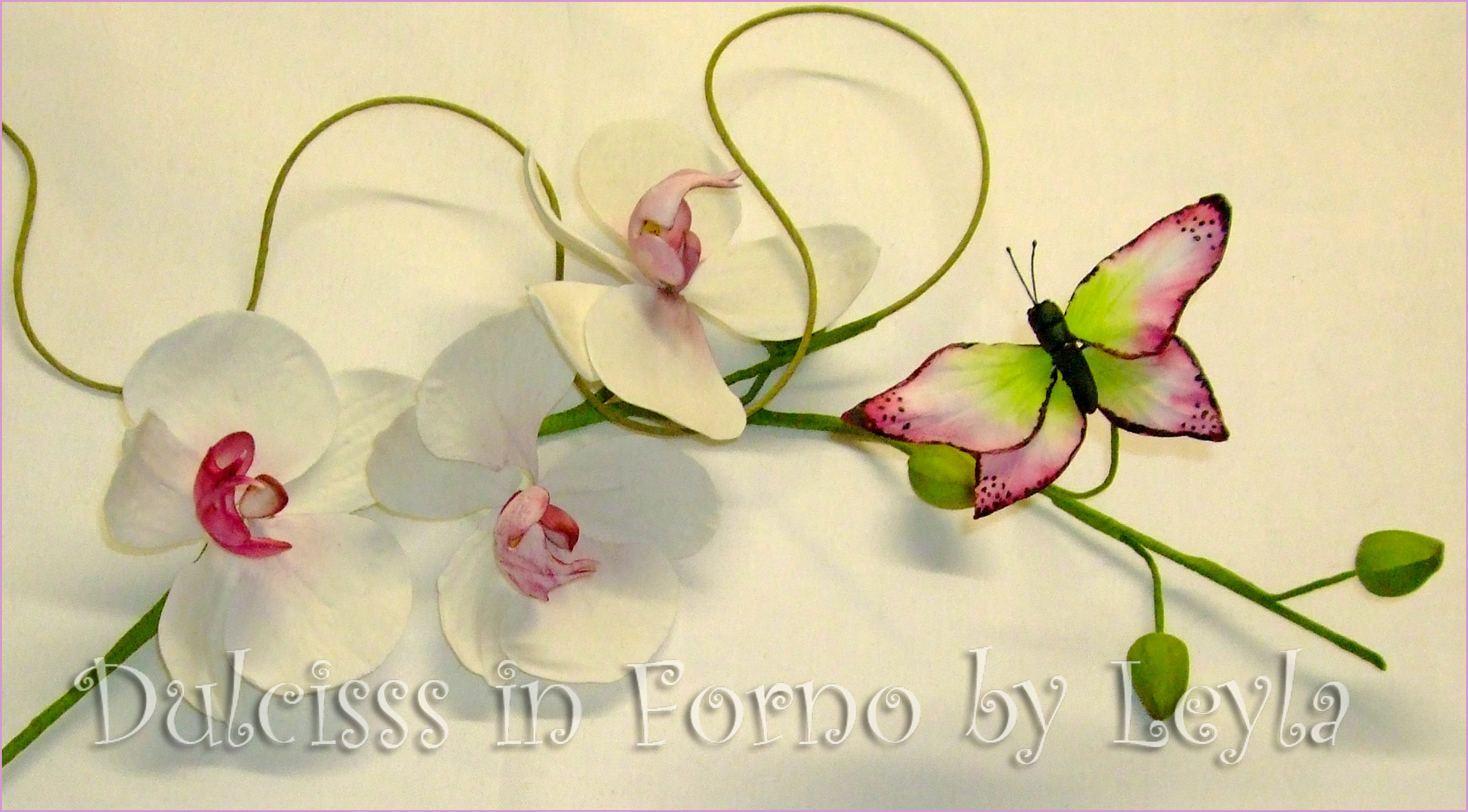 Ramo di orchidea e farfalla in gumpaste corso con ida - Come curare un orchidea in casa ...