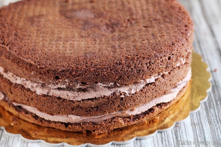pan di spagna al cioccolato Dulcisss in forno by Leyla