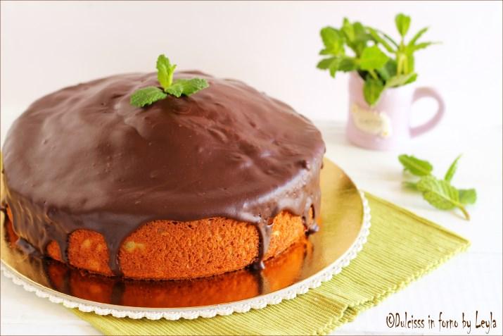 Torta menta e cioccolato con yogurt Dulcisss in forno by Leyla