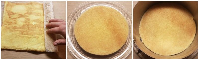La base di pan di spagna