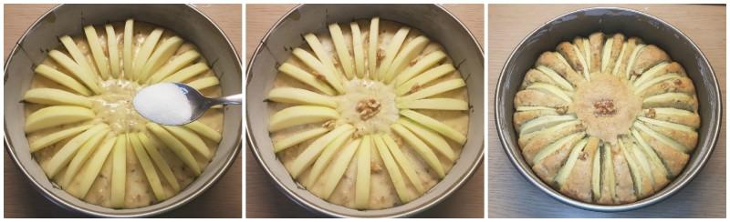 Decorazione della torta noci e mele