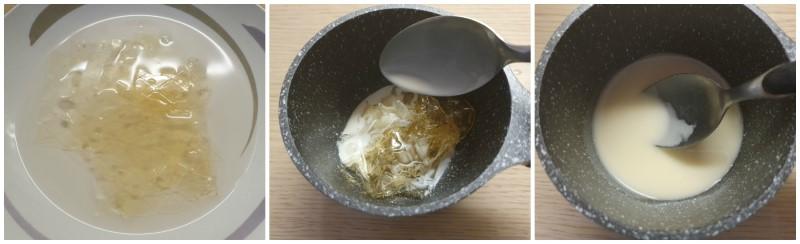 Preparazione della gelatina