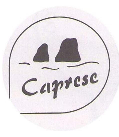 Stencil torta caprese