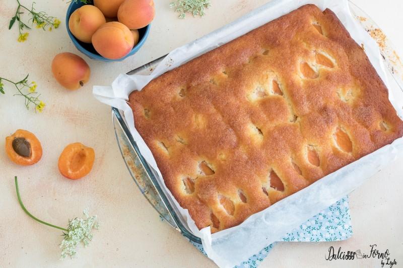 Torta di albicocche, ricetta torta con albicocche