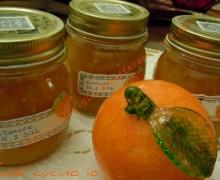 Marmellata di arance1
