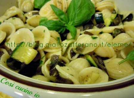 Orecchiette melanzane e zucchine (ricetta vegetariana per picnic)