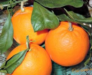 Arance siciliane naturali