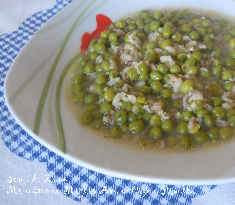 Minestrone miglio avena orzo e piselli ricetta minestra for Cucinare miglio