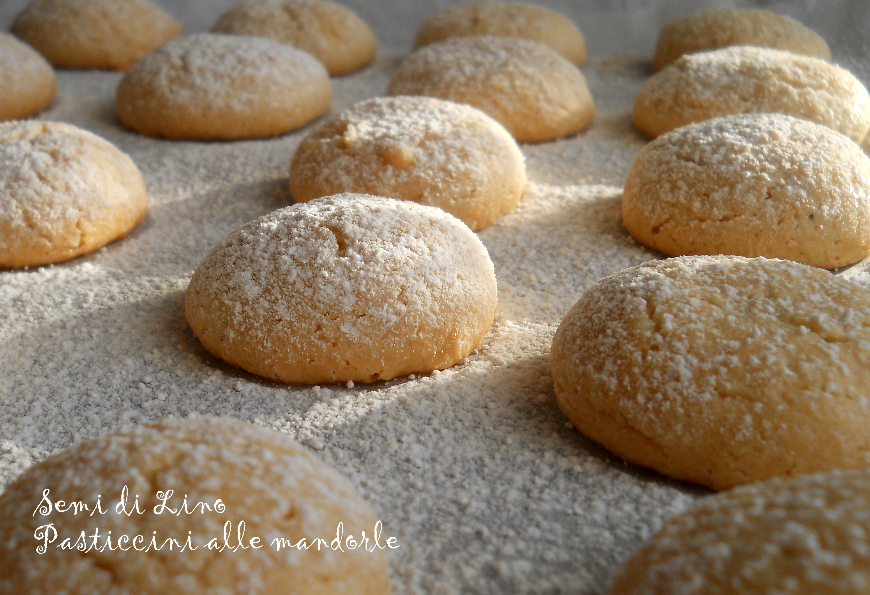 Semi di lino ricette dolci