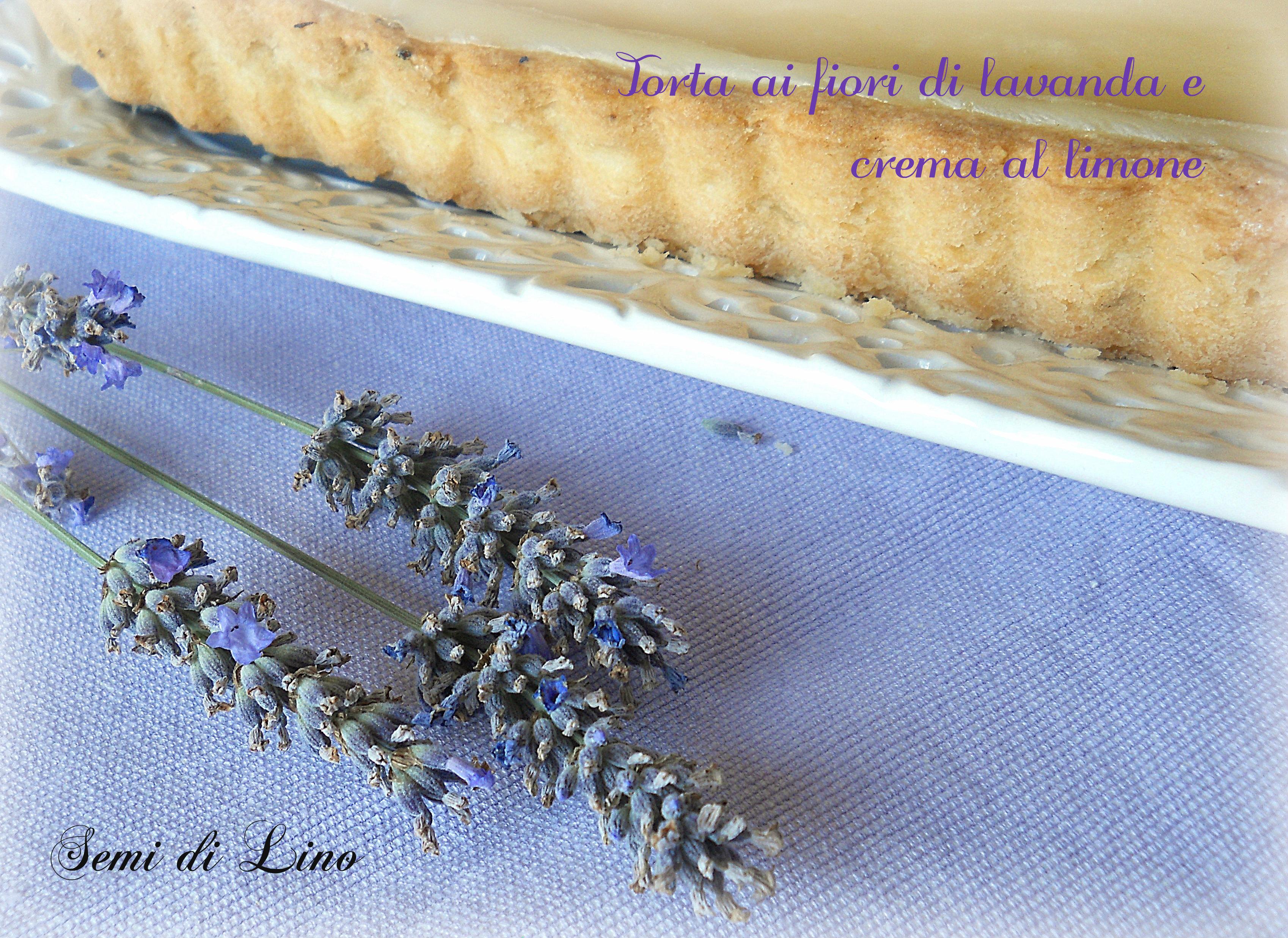 Torta ai fiori di lavanda e crema al limone semi di lino for Fiori di lavanda