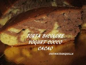 Torta bicolore  yogurt, cocco e cacao