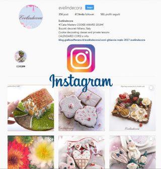 Instagram evelindecora