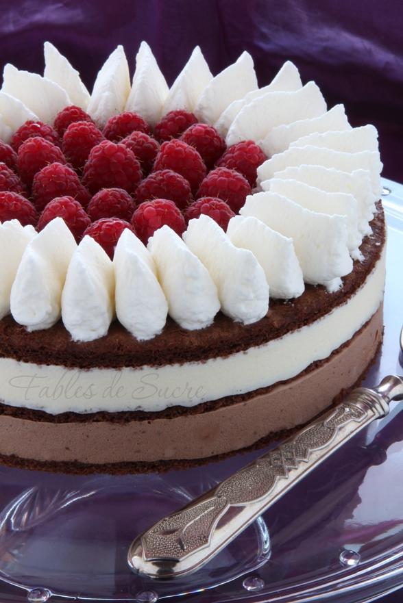 Torta bavarese al cioccolato