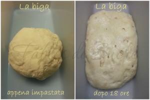 Griglia1