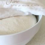 Pane: tutte le nostre ricette