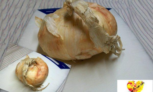 Cipolla al forno, ricetta di Daniela