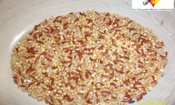 Zuppa campagnola con carote, ricetta personale