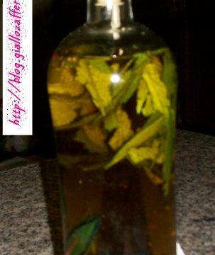 Olio alle erbe aromatiche, ricetta veloce