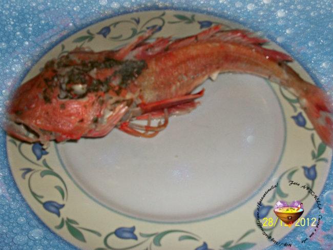 Gallinella in bianco ricetta base fata antonella