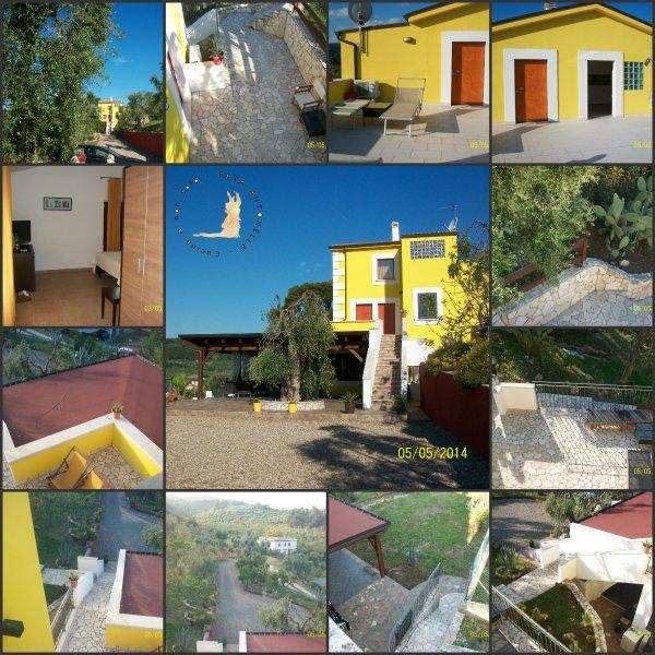 Borgo del Nespolo_Collage