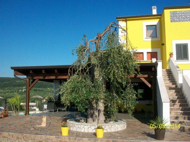 Borgo del Nespolo_Entrata