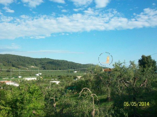Borgo del Nespolo_le colline verso il mare