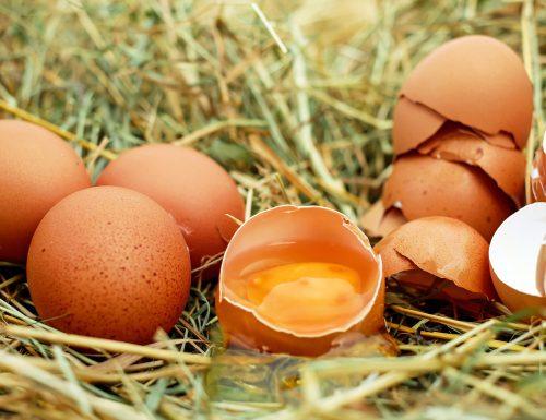 Conosciamo gli alimenti: le uova