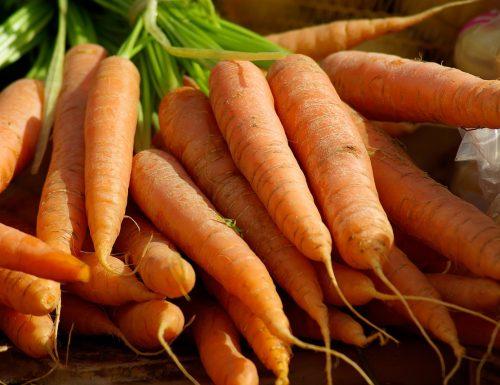 Conosciamo gli alimenti: proprietà e usi delle carote.