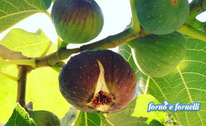 Agosto frutta e verdura del mese