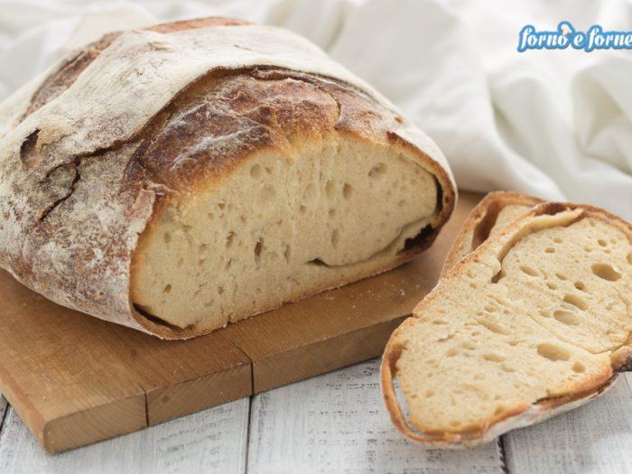 pane con farina di kamut e lievito madre