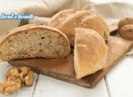 Pane con le noci