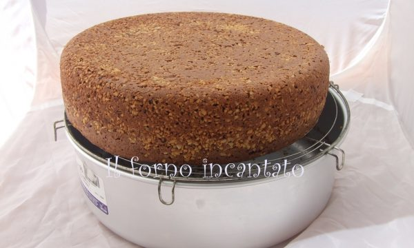 Impasti base: pan di spagna al cacao e granella di nocciole