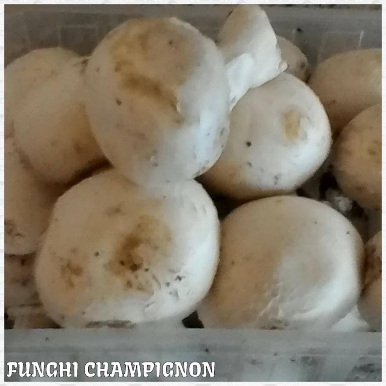 Funghi impanati fantasia in cucina for Creatore di piano
