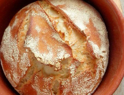Pagnottella di semola con pasta madre cotta in coccio