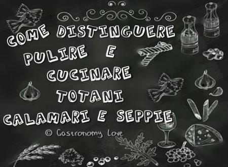 Totani, calamari e seppie: come distinguerli, pulirli e cucinarli.
