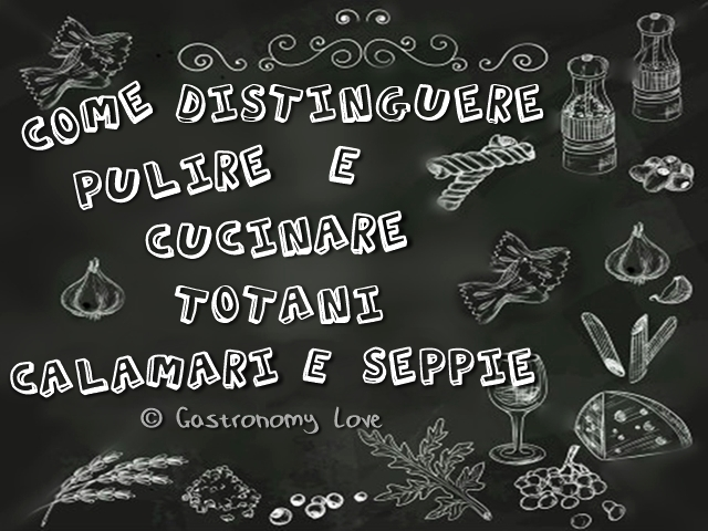 Totani calamari e seppie come distinguerli pulirli e for Cucinare seppie