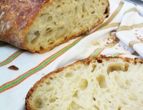Pane senza impasto facile e squisito