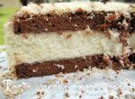 torta fredda ciocco-cocco