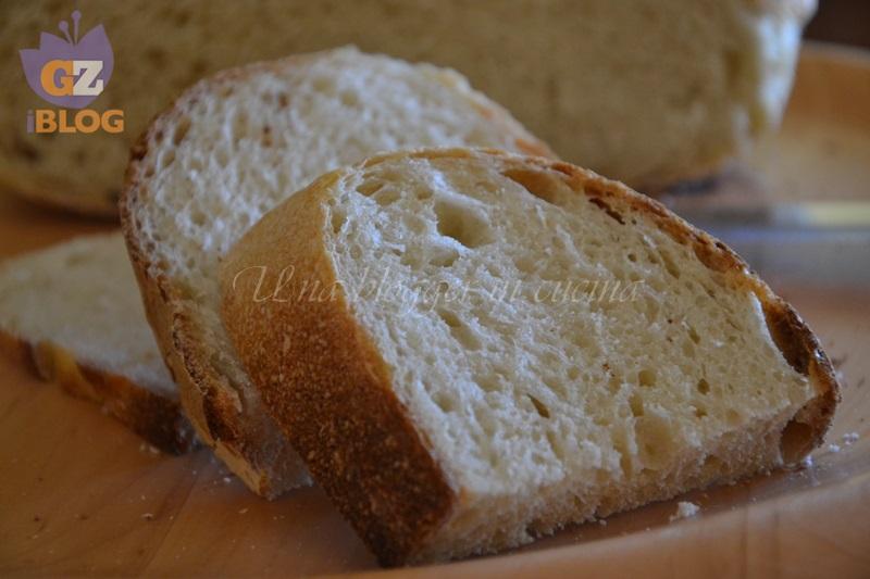 pane di semola scialdone (4)