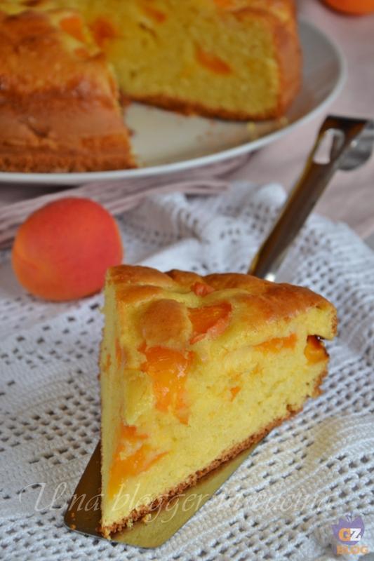 torta all'albicocca (1)